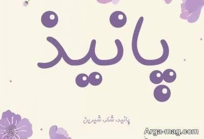 معنی نام دخترانه پانیذ
