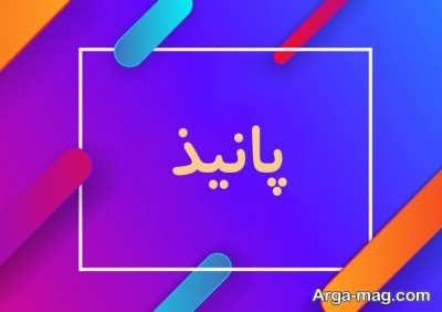 معنای اسم زیبای پانیذ