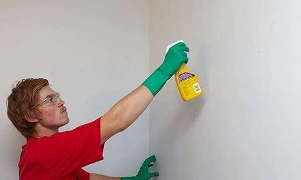 تمیز کردن و شست و شوی دیوارها