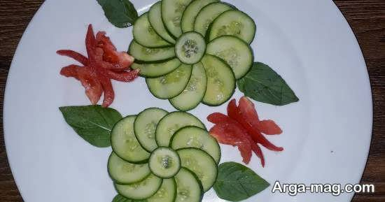 انواع نمونه های بینظیر گوجه و خیار
