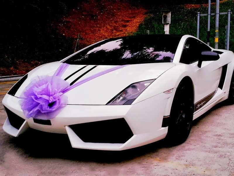 مدل تزیین ماشین عروس سفید