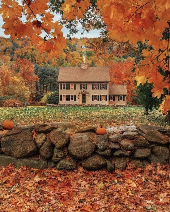 انواع جدید تصاویر پاییز