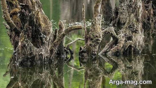 دریاچه ارواح نوشهر استان مازندران