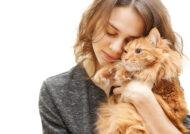 آشنایی با بیوگرافی ژست عکس با گربه
