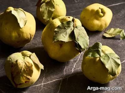 فواید دانه میوه به برای سلامتی