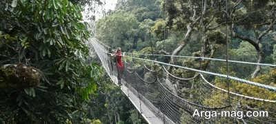 بازدید از پارک ملی نیونگوه