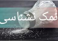 متن درباره نمک نشناسی