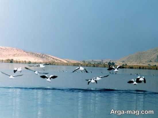 آشنایی با دریاچه کافتر