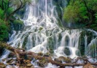 معرفی آبشار وارک و جغرافیا و پوشش گیاهی آن